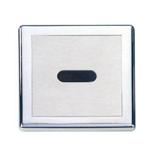 Electronic Toilet Flusher
